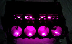 Pink lights on Engine Block table