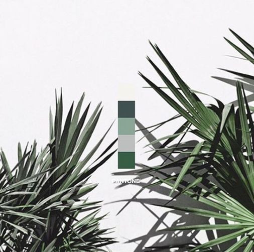 2017 The Year Of Greenery Pantone