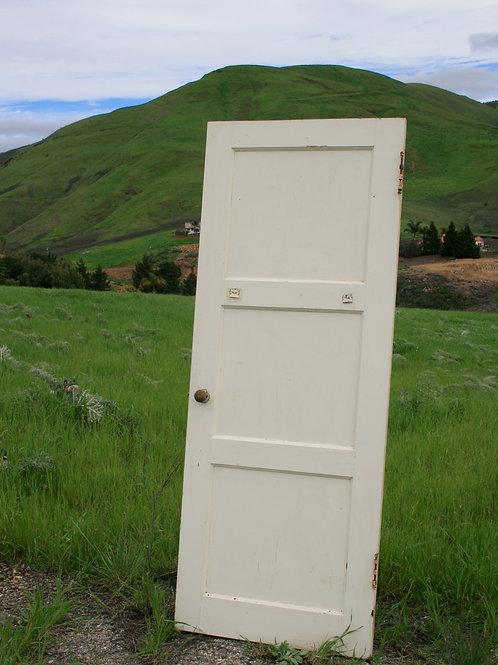 Daisy Door