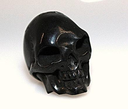 Black Buffalo Horn Skull