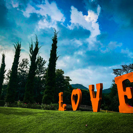 No.41 Love on the Ground