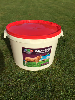 Calf High Protein Tub