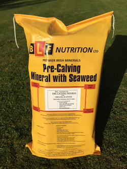 Pre-Calving Mineral With Seaweed