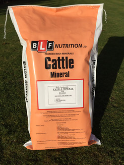 Cattle Mineral With Yeast