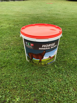 Horse Mineral Block with Garlic 20Kg