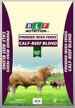 Calf-Beef Balancer