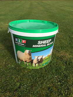 Sheep Mineral Block