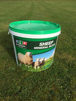 Sheep Mineral Block