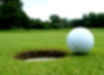 Golf picture.png