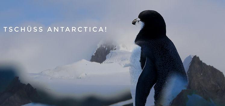 Traumerlebnis Antarktisreise