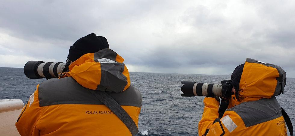 South Shetland Island in Sicht