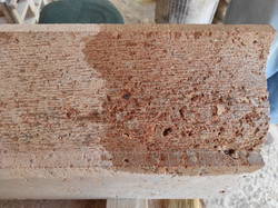 Pecho paloma- textura trinchante-talla-p