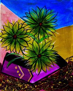 Desert Floweres