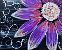 Bloom of Beauty