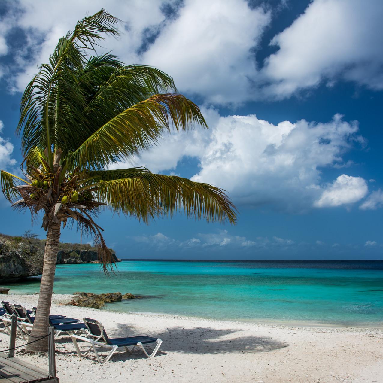 Choose a Caribbean Wedding