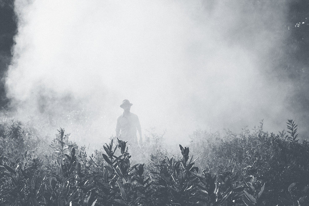 person in a hat standing in a field