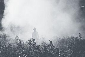 Individual walking through a foggy field