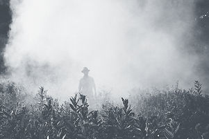 Man in a Field