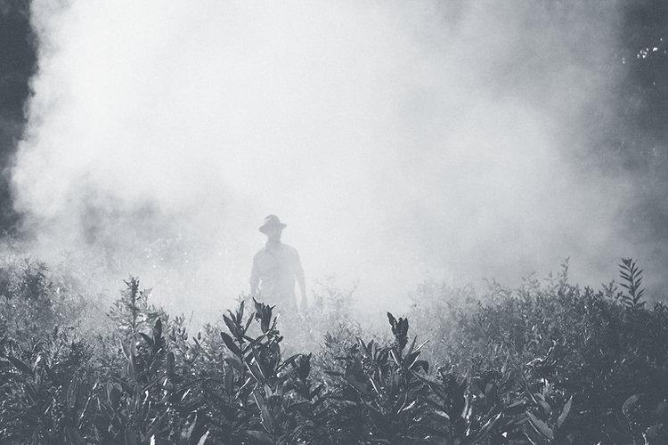 Mann in einem Feld