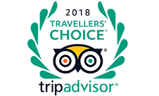 Trip advisor logo travellers choice.png