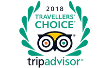 Trip advisor logo travellers choice.png