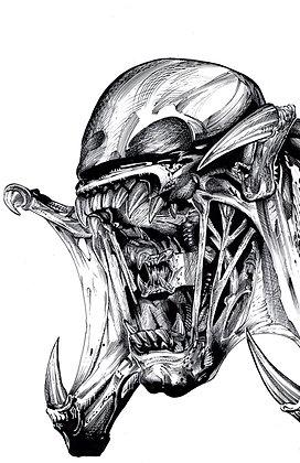 Pred-Alien Hybrid