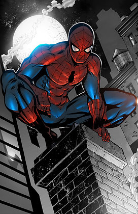 Rooftop Spiderman