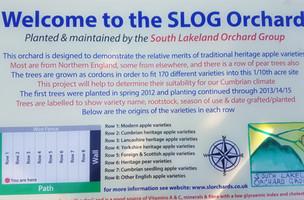 SLOG orchard sign.jpg
