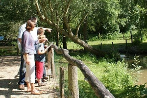 Visite du Parc aux oiseaux