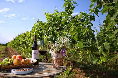 Грузинские вина. Красные и Белые вина Грузии.