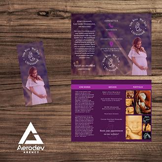 Brochure Examples.png
