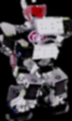 RoboEd Humanoide Romanbo