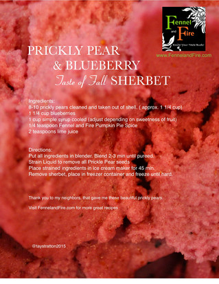 Prickly Pear and Blueberry Sherbet with a touch of fall spices.