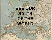 Salts of the World