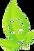 logo reciclaje hojas2.png