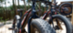 Fantic Bikes.jpg