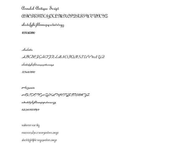 Script Fonts-1.jpg