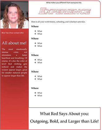 Red Resume Two
