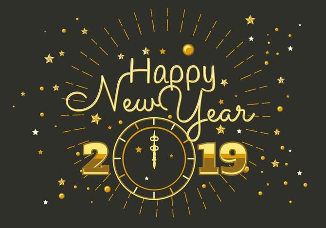 明けましておめでとうございます🎍 Happy New Year 2019 ☆彡