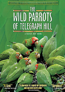 Wild Parrots DVD: Double-Disc Collector's Edition
