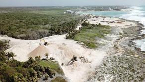 Nuevo hotel de Grupo Posadas destruye santuario de la tortuga marina en Tulum