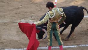 La tauromaquia no será Patrimonio Cultural de la Humanidad: Unesco