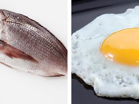 Huevo y pescado no son necesarios para mejorar la salud: nutrióloga