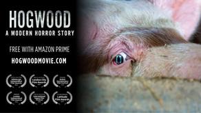 VIDEO: Documental vegano que expone el horror de los mataderos gana varios premios