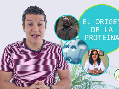VIDEO: La proteína animal no existe