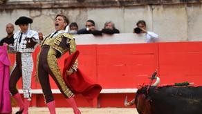 GRAN NOTICIA: Sector taurino devastado por covid-19; salvan su vida 120 animales en España