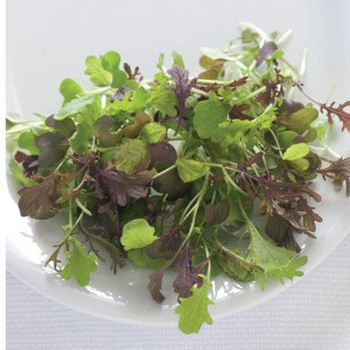 Spicy Salad Mix 50g