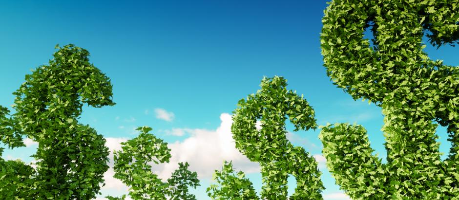 WRI: país pode crescer 38% mais até 2030 com a economia verde
