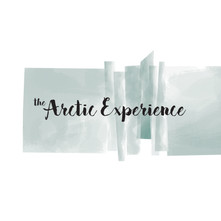 The Arctic Experience