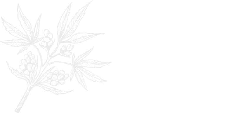 cannabis-shop-title-bg.png